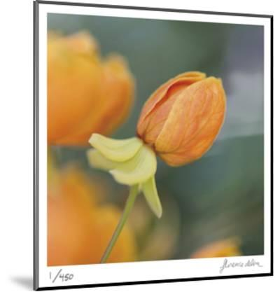 Summer Bloom 2-Florence Delva-Mounted Limited Edition