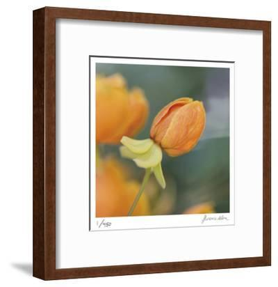 Summer Bloom 2-Florence Delva-Framed Limited Edition