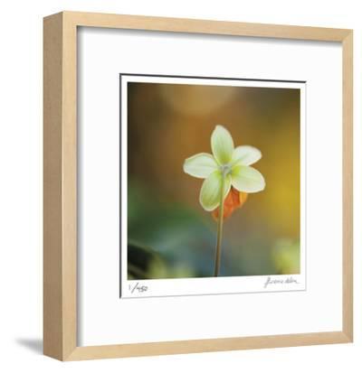 Summer Bloom 3-Florence Delva-Framed Limited Edition
