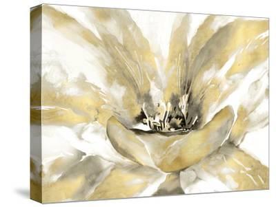 Concerto Luxe-Tania Bello-Stretched Canvas Print