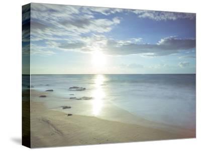 Sunshine Shores-Assaf Frank-Stretched Canvas Print