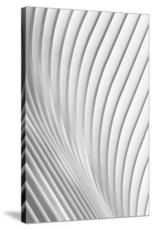 Calatrava Lines-Christopher Budny-Stretched Canvas Print