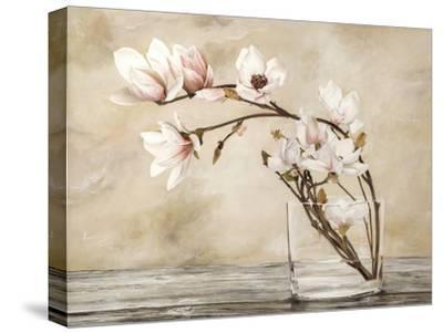 Fiori di magnolia-Cristina Mavaracchio-Stretched Canvas Print
