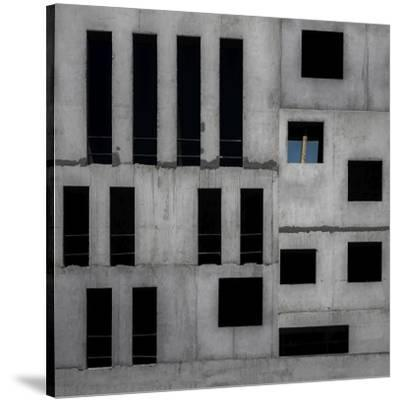 Isolation Cell-Gilbert Claes-Stretched Canvas Print
