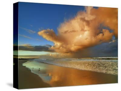 Sunset on the ocean, New South Wales, Australia-Frank Krahmer-Stretched Canvas Print