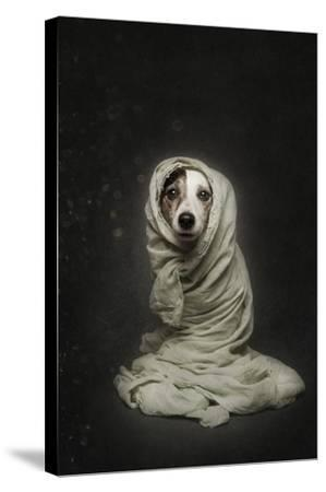 Wrapped-Heike Willers-Stretched Canvas Print