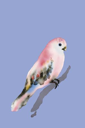 Paintbox Birds - Love-Kristine Hegre-Framed Giclee Print