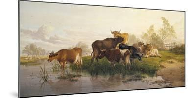 Cows in the Water Meadows-Thomas Cooper-Mounted Giclee Print