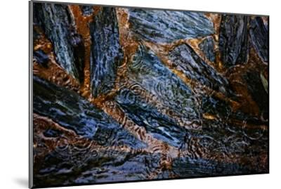 Landscape XVI-Peter Morneau-Mounted Art Print