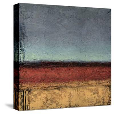 Terrain IV-Jeannie Sellmer-Stretched Canvas Print