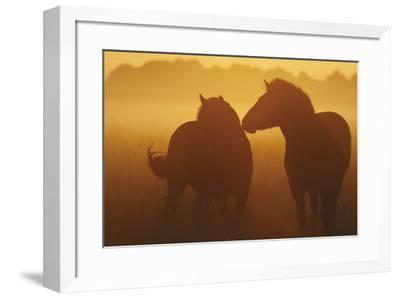 With You-Staffan Widstrand-Framed Giclee Print