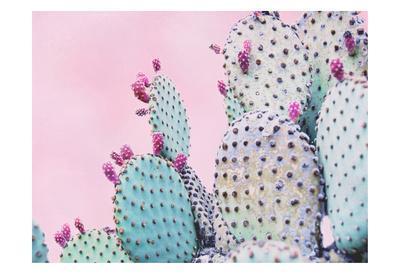 Pink Crush VI-Elizabeth Urquhart-Framed Art Print