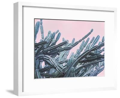 Pink Crush VII-Elizabeth Urquhart-Framed Art Print