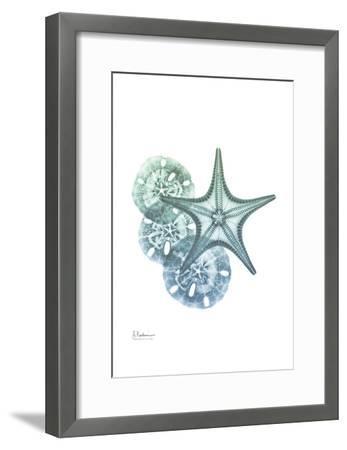 Shimmering Dollars and Stars-Albert Koetsier-Framed Art Print