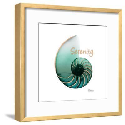Shinny Serenity Snail 1-Albert Koetsier-Framed Art Print