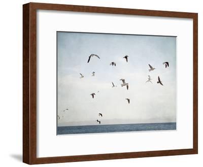 Soar I-Elizabeth Urquhart-Framed Art Print