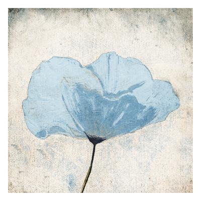 Soft Floral Blue-Jace Grey-Framed Art Print