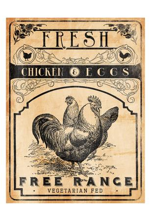 Chicken Eggs-Jace Grey-Framed Art Print