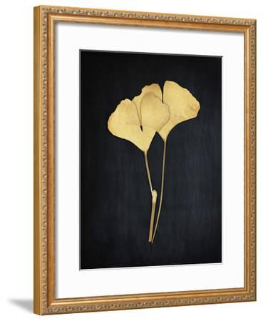 Midas Ginko 1-Marcus Prime-Framed Art Print