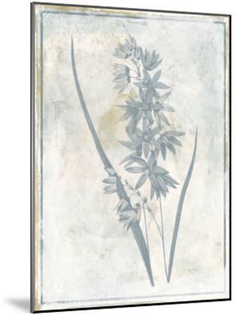 Sky Floral Three-Jace Grey-Mounted Art Print