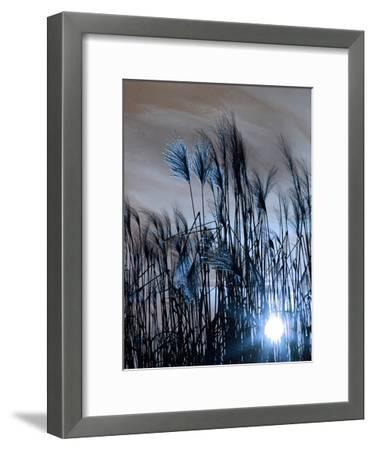 Blue Sunset 1-Sheldon Lewis-Framed Art Print