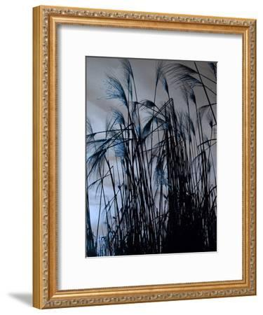 Blue Sunset 2-Sheldon Lewis-Framed Art Print