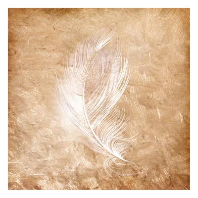 Copper Feathered 2-Kimberly Allen-Framed Art Print