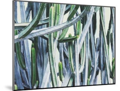 Green Crush I-Elizabeth Urquhart-Mounted Art Print