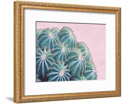 Pink Crush II-Elizabeth Urquhart-Framed Art Print