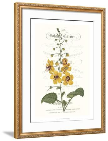 Flower Garden Varietals V-Vision Studio-Framed Giclee Print