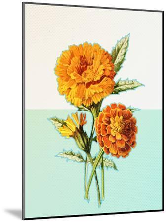 Marigold Yellow--Mounted Art Print