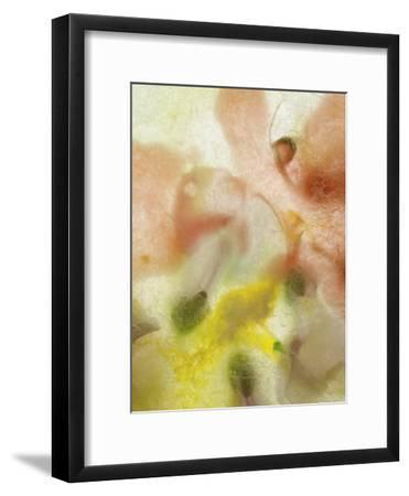 Summer Time-Zina Zinchik-Framed Art Print