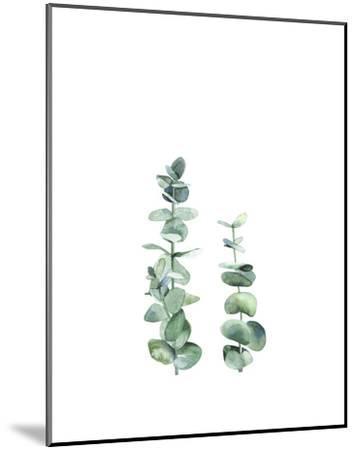 Eucalyptus I-Ann Solo-Mounted Art Print