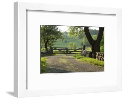 By the Way-Orah Moore-Framed Art Print