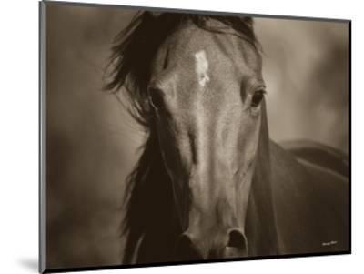 Dark Eyes-Barry Hart-Mounted Art Print