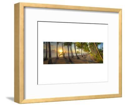 Palm Cove-Doug Cavanah-Framed Art Print