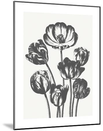 Tulips (Ivory & Ink)-Botanical Series-Mounted Art Print