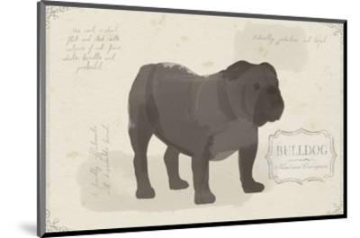 Dog Club - Bulldog-Clara Wells-Mounted Art Print