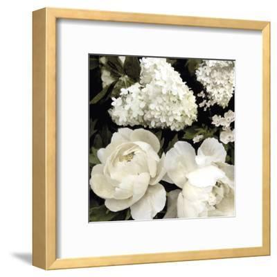Ebony Blooms-Alan Lambert-Framed Art Print