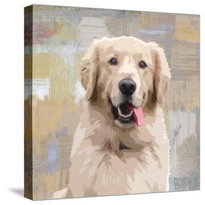 Golden Retriever-Keri Rodgers-Stretched Canvas Print