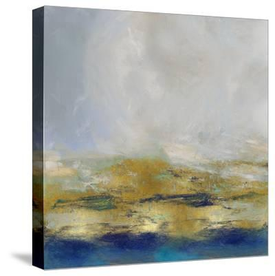 Terra in Aqua-Jake Messina-Stretched Canvas Print