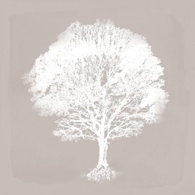 Pastel Forest I-Ken Hurd-Framed Giclee Print