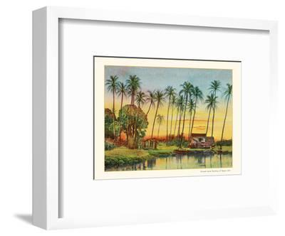 Coconut Grove - Territory of Hawaii-Unknown-Framed Art Print