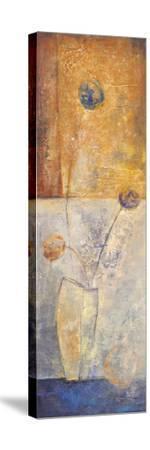 May II-Volk-Stretched Canvas Print