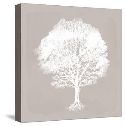 Pastel Forest I-Ken Hurd-Stretched Canvas Print