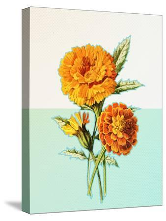 Marigold Yellow--Stretched Canvas Print