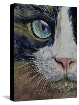 Snowshoe Cat-Michael Creese-Stretched Canvas Print