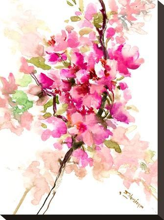 Cherry Blossom, Sakura 1-Suren Nersisyan-Stretched Canvas Print