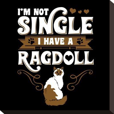 Ragdoll Cat Pet-Wonderful Dream-Stretched Canvas Print