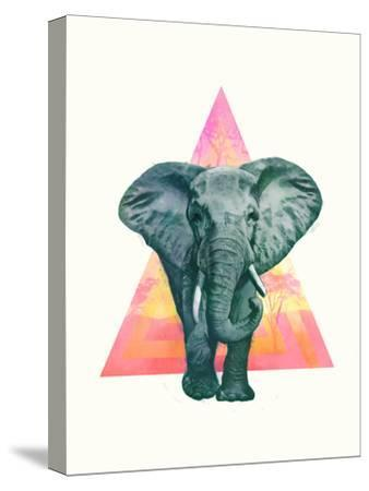 Elephant2-Laura Graves-Stretched Canvas Print